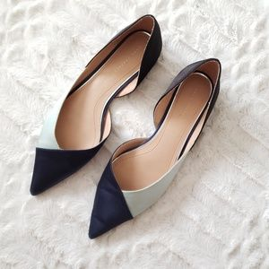 Zara Colorblock Satin Pointed Toe Flats